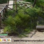 Porcellino in legno di produzione Legnolandia